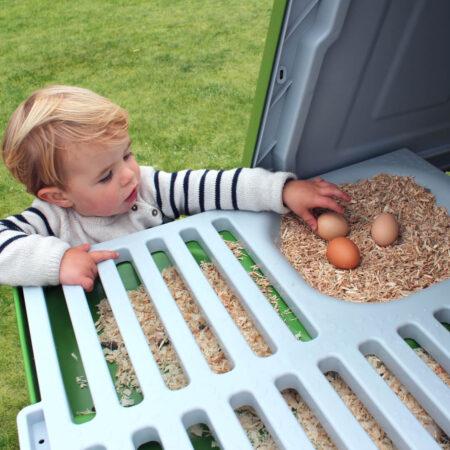 Un garçon qui ramasse des œufs dans un poulailler Eglu