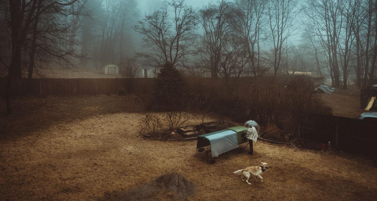 un éleveur de poule ramassant des œufs en automne